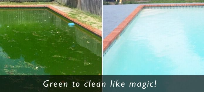 green swimming pool drain cleaning