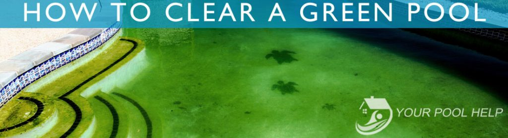how to clean and clear a green swimming pool