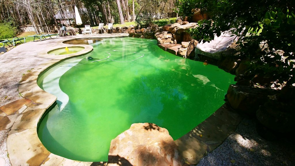 how to shock a green swimming pool