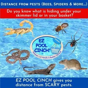 best tools for pool skimmer lids 3
